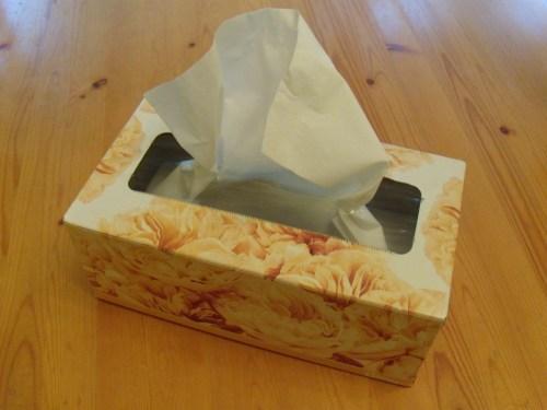 Box of facial tissue