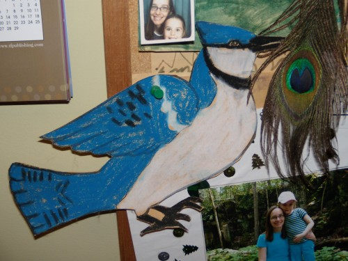 Bulletin board with bluejay artwork